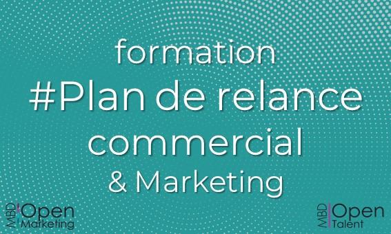 Formation Plan de relance commercial et marketing